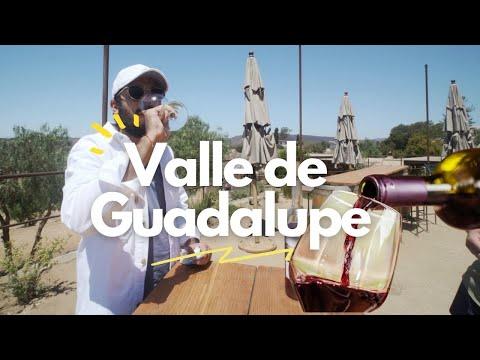 Los mejores 3 Viñedos Del Valle de Guadalupe en Baja California 🍇🍷 LA RUTA DEL VINO 🔵 PARTE 2