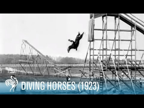 Diving Horses: A Wild Attraction For The Daring Rider (1923) | British Pathé