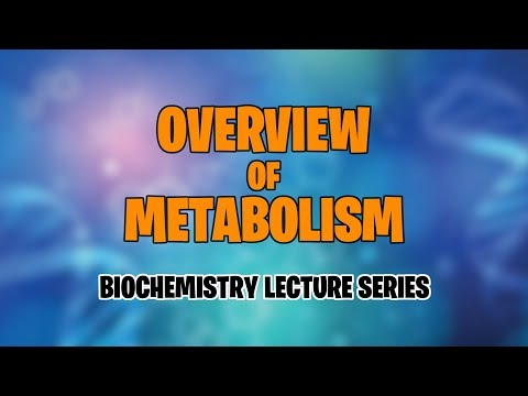 OVERVIEW OF METABOLISM | BIOCHEMISTRY | MEDVIDSMADESIMPLE