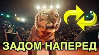 Ленинград - Кольщик ЗАДОМ НАПЕРЕД