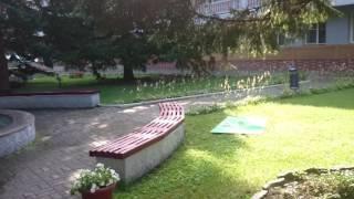 видео Курорты Алтайского края