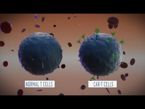 Chinese Doctors Are Using Modified T-Cells to Treat Advanced Forms of Cancer