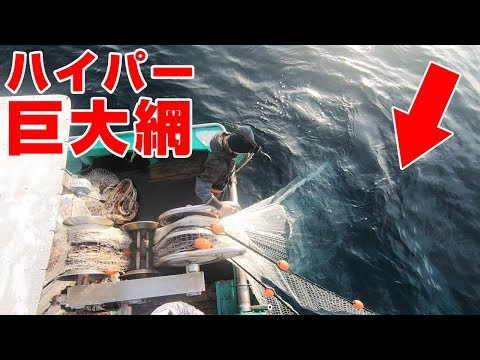 (ENG SUB)1000 meters of giant nets into the sea!! Snappers and Grunts!!
