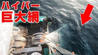 【鯛だらけ】「1000mの巨大網」を海に投下してみたら…(水中映像・漁師さんGOPRO視点あり)