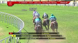 Vidéo de la course PMU PREMIO KENOLA