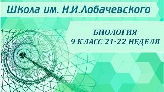 Биология 9 класс 21-22 неделя Клеточная теория