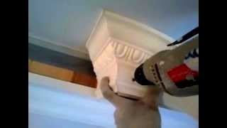 монтаж гибкого потолочного карниза(В этом видео вы узнаете об одном из способов монтажа полиуретанового карниза FLEX к натяжному потолку ,карниз..., 2014-04-26T11:08:02.000Z)
