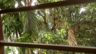 1 bedroom flat in South Kolkata Garia just beside Kavi Nazrul Metro. 8910851114 . 01.06.2018