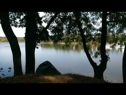 Calm waters - Bellevue Park Stockholm
