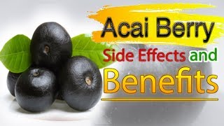 Acai berry   Health Benefits and Side Effects