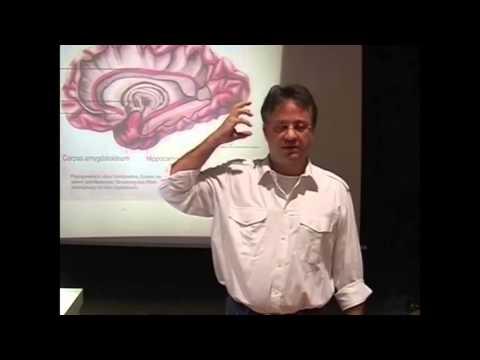 Hammer vortrag !! angst krankheit, phobien, sucht, angststörung , psychologie, lehrvideo doku