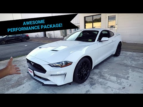 Reviewing The New 2019 EcoBoost Mustang!