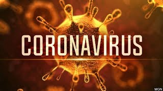 What The Corona Virus Means For Us   Financial Friday's Episode 1
