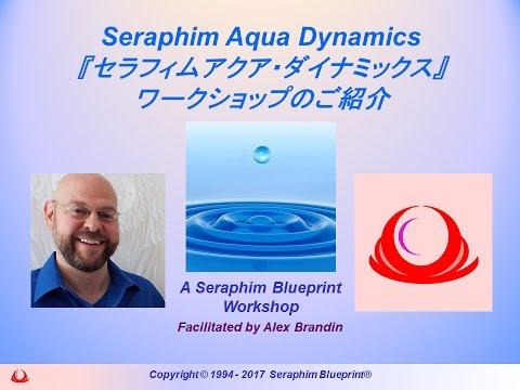 Introduction to the newest Seraphim Blueprint workshop. 私達は全く新しいエネルギーのスペクトラム、セラフィム・ブループリント・システムの最新の増補コ...