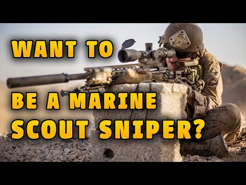 Marine Veteran Reacts To Marine Scout Snipers