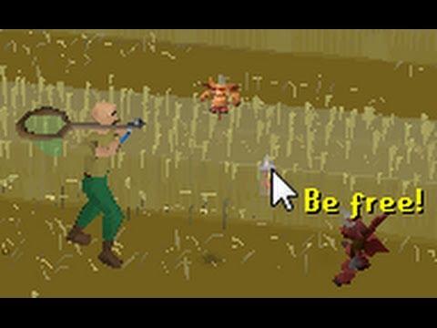 Catching Dragon Implings - Solo Runescape Progress 6