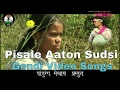 Pisale Aaton Sudsi || Adiwasi Gondi Video Song HD || Pandurang Meshram Present