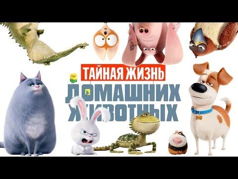 Тайная жизнь домашних животных 2. The Secret Life Of Pets 2.