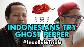 #IndoBuleTrials: Indonesians Try Ghost Pepper/Bhut Jolokia
