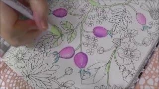 【ぬりらじ】大人のぬり絵~野の花のぬり絵ブックをぬりぬりしてますのよ(๑╹ω╹๑ ) 担当砂糖かなめ【ぬり絵・水彩筆ペン】