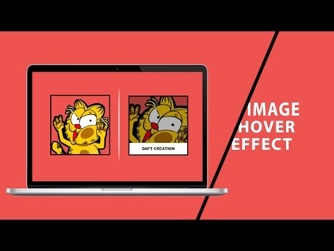 Speed Code: Image Overlay Hover - Fade in effect - HTML | CSS