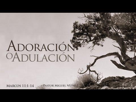 Adoración o adulación - Miguel Núñez
