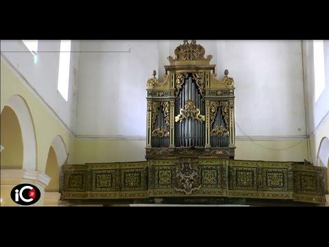 Rossano, recupero Organo di San Domenico e Schola Cantorum