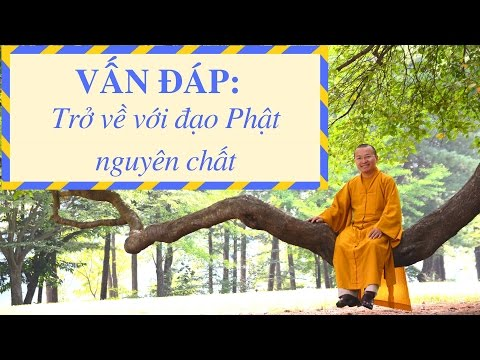 Vấn đáp: Đạo Phật nguyên chất với Tịnh độ Tông và Mật Tông  (30/05/2014) - Thích Nhật Từ
