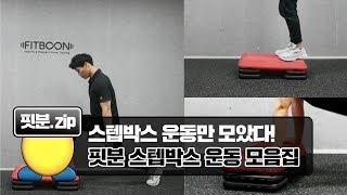 [핏분] 스텝박스 고강도 운동법 모음집 (서킷트레이닝/…