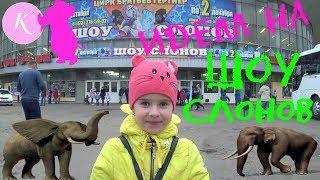 🐘Шоу слонов в цирке🐫Шоу СЛОНОВ в ЦИРКе Воронежа