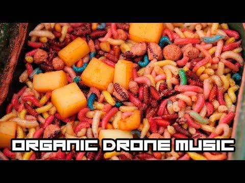 NEW HIPSTER CRAZE - ORGANIC DRONE MUSIC!?