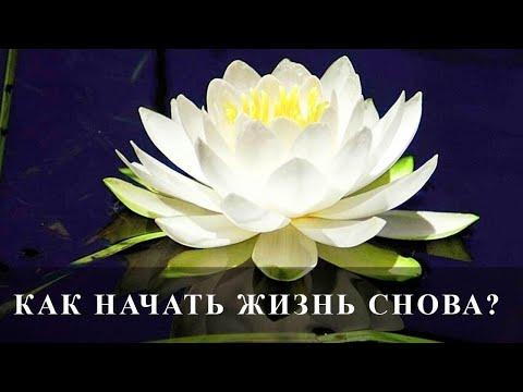 Как начать жизнь с чистого листа? Новый день - новая жизнь.
