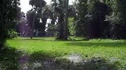 Historical Evergreen Cemetery Ocala Florida