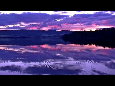 Night sound With Meditation || Free Background Video & Music For You tube No Copyright ||