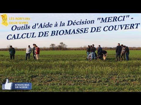 """Outil d'Aide à la Décision """"MERCI"""" - CALCUL DE BIOMASSE DE COUVERT"""