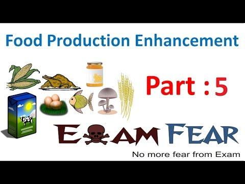Biology Food Production part 5 (Inbreeding) class 12 XII