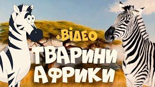 ТВАРИНИ АФРИКИ  розвиваючі мультики для дітей українською мовою