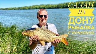 Первые САЗАНЫ Лето 2021 Рыбалка на Дону с ночевкой