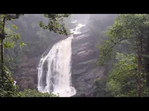 Cochin to Munnar Road Trip || Kerala