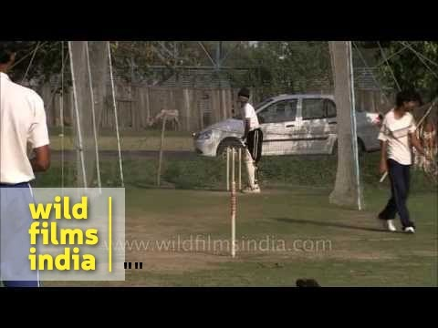 Future of Indian cricket - in Bengal?