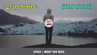 Zeper - What You Need -  EDM Music 2017