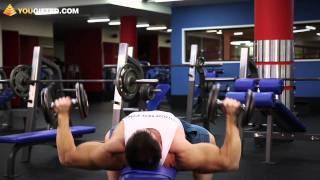 Упражнения для груди. Жим гантелей лежа.(Вконтакте: http://vk.com/yougifted Facebook: http://www.facebook.com/YouGiftedOnline Twitter: http://twitter.com/YouGiftedRussia Подписка: ..., 2011-11-03T05:58:02.000Z)