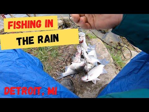 Fishing In The RAIN(Detroit River Silver Bass Run 2020)