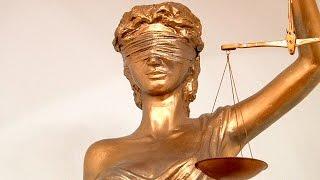 видео программы для юристов