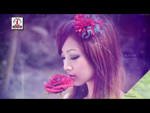 Latest Telugu DJ Songs   College Pilla Song   Lalitha Audios And Videos