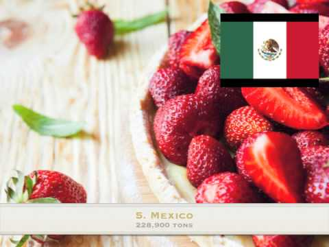 Top 10 strawberry producing countries