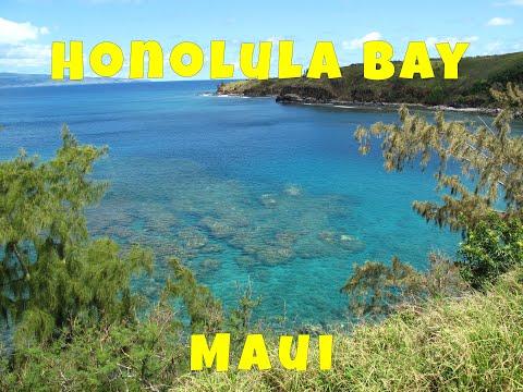 Honolua Bay Maui. Maui's BEST Snorkel & Dive Spot! Must See Place!
