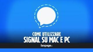 signal, l'app di messaggistica preferita da Snowden, è disponibile per computer: come utilizzarla e