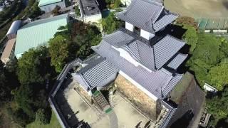 掛川城強風