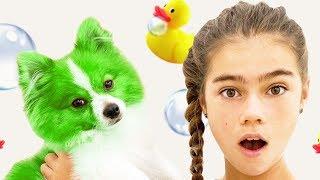 Nastya và Artem tắm cho một con chó con. Mia vẽ con chó